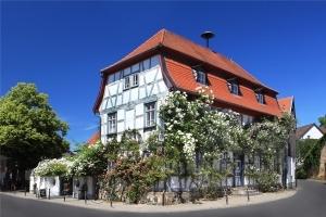 Alles über Rosen - Eine süß duftende Auszeit im Rosenmuseum Steinfurth
