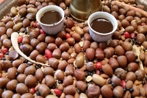Workshop Ersatzkaffee für Feinschmecker - Sammeln, rösten & genießen