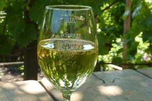 Frankfurter Weinlagenwanderung - Von Seckbach nach Bischofsheim durch ehemalige Weinberge