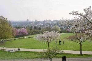 Frankfurts grüne Lungen - Eine Parkwanderung im Nordosten der Mainmetropole