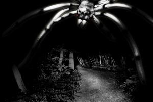 Die Schrecken der weißen Spinne - Gruseltour durch Frankfurt