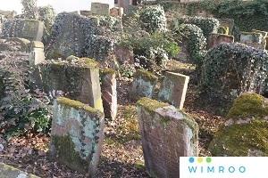 Interaktive LIVE-FÜHRUNG: Jüdischer Friedhof Online - Eine virtuelle Reise in die Vergangenheit