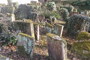 Jüdisches Frankfurt - Ein Rundgang über den Jüdischen Friedhof